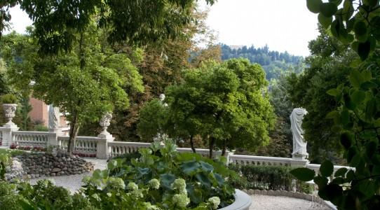 Serra con cucina in giardino_14