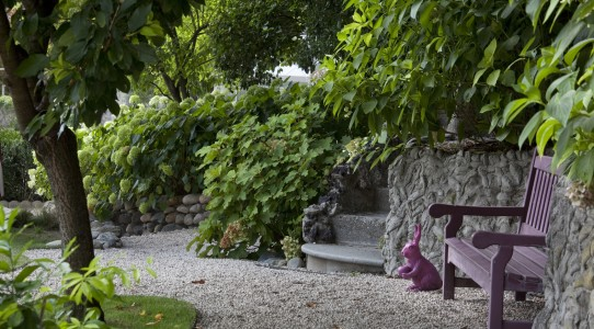 Serra con cucina in giardino_10