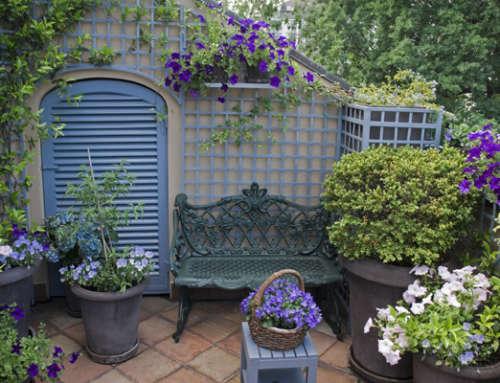 Il terrazzo blu